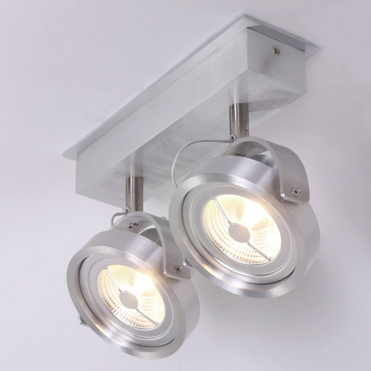 Industriele plafondlamp met twee spots