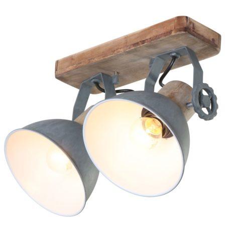 Spot 2-lichts