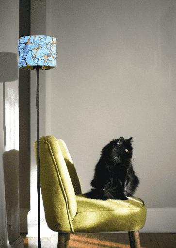 Schemerlamp met kap, vloerlamp met stoffenkap. Projectverlichting. Exclusieve design projectverlichting van Masterlight. Masterlight verlichting vindt u bij Webo Verlichting in Nijmegen bij Beuningen. Dealer van alle Masterlight lampen. Koop online of bezoek de grootste verlichtingsshowroom van Nederland voor lampen inspiratie, verlichtingsadvies of een lichtplan.