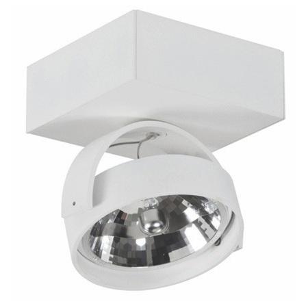Industriële opbouwspot voor wand en plafond. Plafondspot